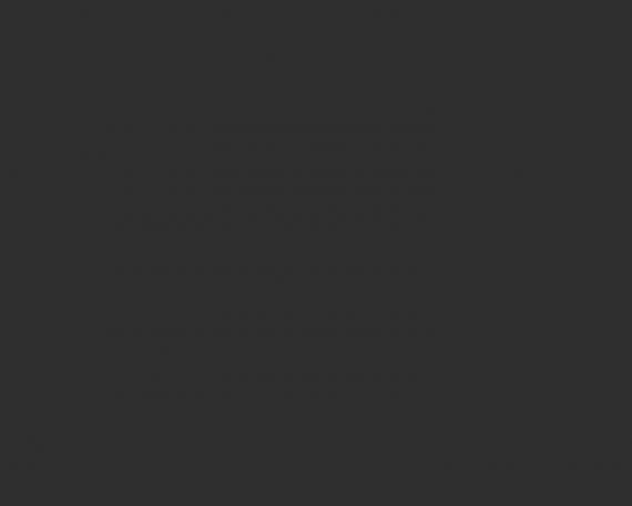 Cras tristique turpis